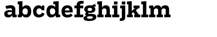Salvo Serif Bold Font LOWERCASE