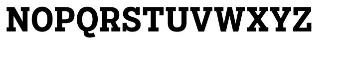 Salvo Serif Condensed Bold Font UPPERCASE