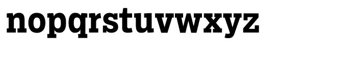 Salvo Serif Condensed Bold Font LOWERCASE