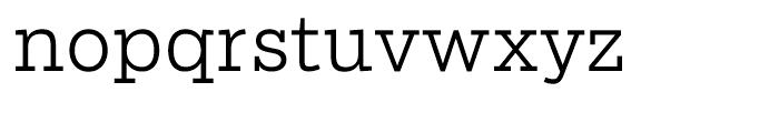 Salvo Serif Light Font LOWERCASE