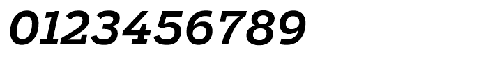 Salvo Serif Medium Italic Font OTHER CHARS