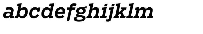 Salvo Serif Medium Italic Font LOWERCASE