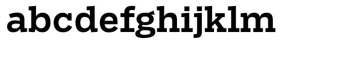 Salvo Serif Medium Font LOWERCASE
