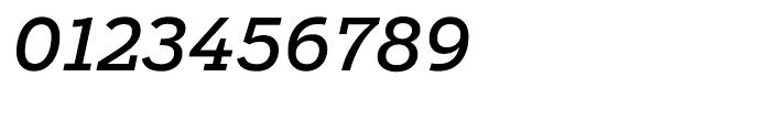 Salvo Serif Regular Italic Font OTHER CHARS