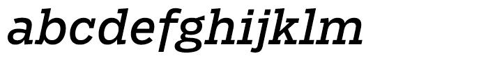 Salvo Serif Regular Italic Font LOWERCASE