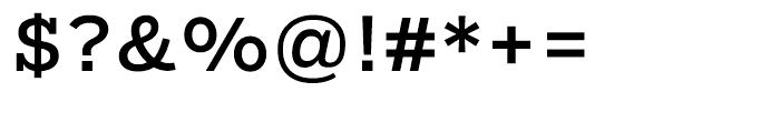 Salvo Serif Regular Font OTHER CHARS