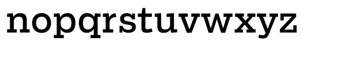 Salvo Serif Regular Font LOWERCASE