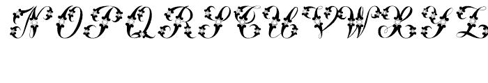 Samantha Regular Font UPPERCASE