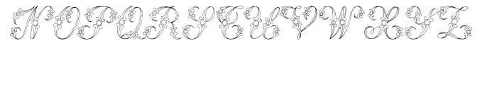 Samantha Regular Font LOWERCASE