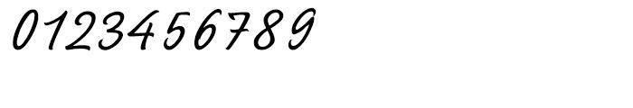 Sayer Script Light Font OTHER CHARS