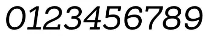 Sanchez Italic Font OTHER CHARS