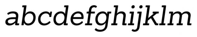 Sanchez Italic Font LOWERCASE