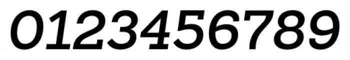 Sanchez Slab SemiBold Italic Font OTHER CHARS