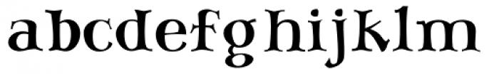 SAV PT Display Font LOWERCASE