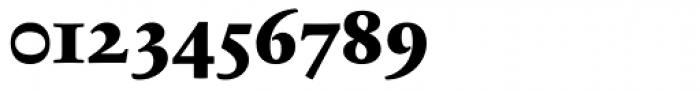 Sabon Next LT ExtraBold OsF Font OTHER CHARS