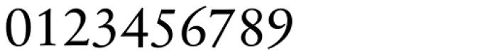 Sabon Next Pro Display Font OTHER CHARS