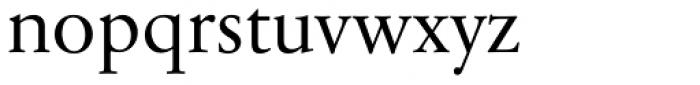 Sabon Next Pro Display Font LOWERCASE