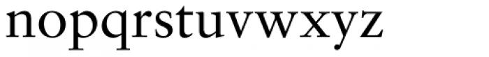 Sabon Pro Roman Font LOWERCASE