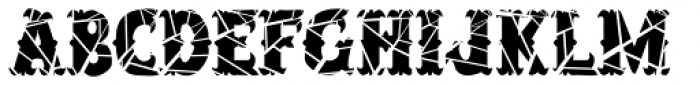 Salloon Cracked Font LOWERCASE