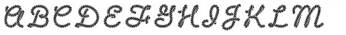 Salty Dog Solid Font UPPERCASE