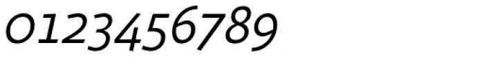 Sana Sans Italic Font OTHER CHARS