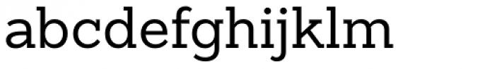 Sanchez Slab Font LOWERCASE