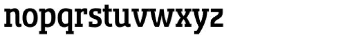 Sancoale Slab Cond Medium Font LOWERCASE
