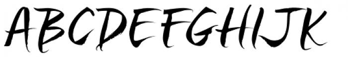 Sanscripta Font UPPERCASE