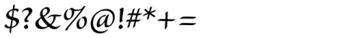 Sanvito Pro Regular Font OTHER CHARS