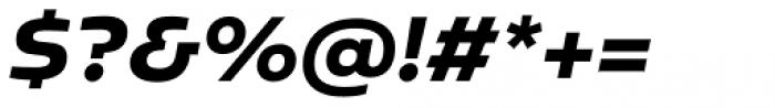 Sarun Pro Heavy Italic Font OTHER CHARS