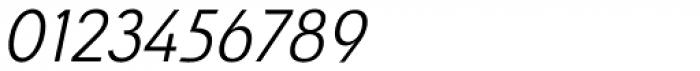Savigny Regular Normal Italic Font OTHER CHARS