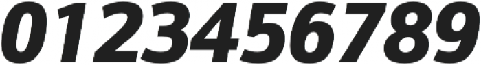 Schnebel Sans Pro Black Italic otf (900) Font OTHER CHARS