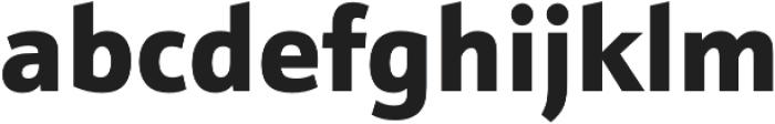 Schnebel Sans Pro Black otf (900) Font LOWERCASE