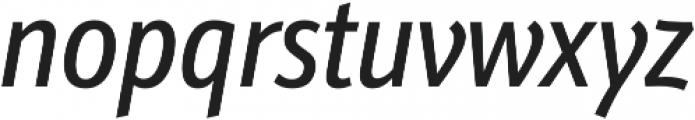 Schnebel Sans Pro Comp Italic otf (400) Font LOWERCASE