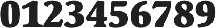 Schuss Serif Pro Heavy otf (800) Font OTHER CHARS