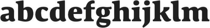 Schuss Serif Pro Heavy otf (800) Font LOWERCASE
