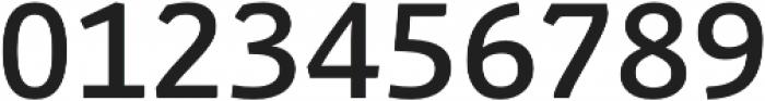 Schuss Slab Pro Medium otf (500) Font OTHER CHARS