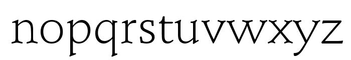 Schindler Light Font LOWERCASE