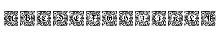 Schmuck-Initialen 1 Font UPPERCASE