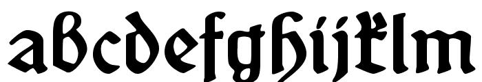 SchneidlerSchwabacher Font LOWERCASE