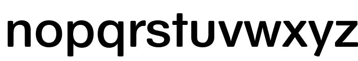 SchulVokalDotless Font LOWERCASE