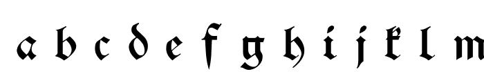 Schwaben Alt UNZ1A Italic Font LOWERCASE