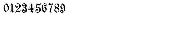 Scottsdale Text NF Regular Font OTHER CHARS