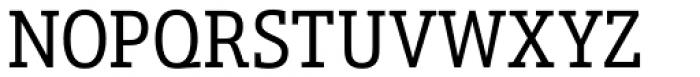 Schnebel Slab Pro Condensed Font UPPERCASE
