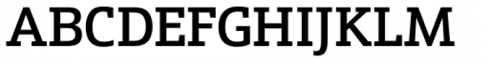 Schnebel Slab Pro Medium Font UPPERCASE