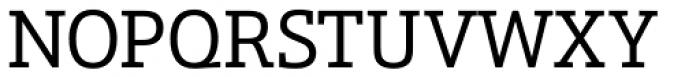 Schnebel Slab Pro Font UPPERCASE