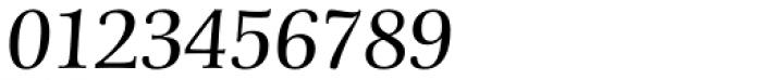 Schneider-Antiqua BQ Light Italic Font OTHER CHARS
