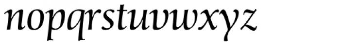 Schneider-Antiqua BQ Light Italic Font LOWERCASE