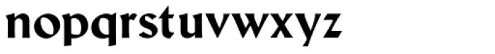 Schneidler Latein Bold Font LOWERCASE