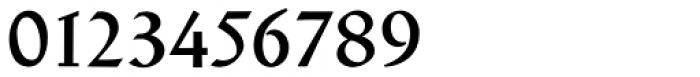 Schneidler Latein Medium Font OTHER CHARS